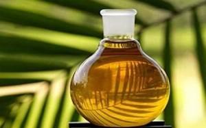 全球棕榈油产量将继续增长