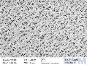 图2.66亲水膜与疏水膜1