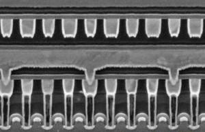 电子显微镜扫描不同超滤膜的剖面图