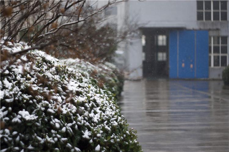 无锡宁,你们期待的大雪 终~于~来~了!